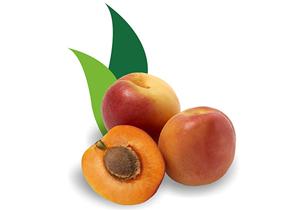 apricotSmall