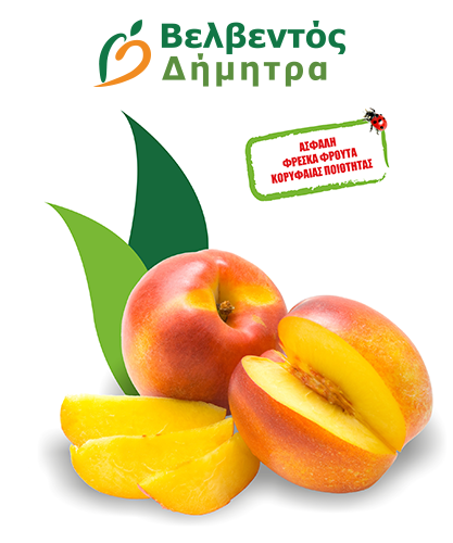 nektarinia